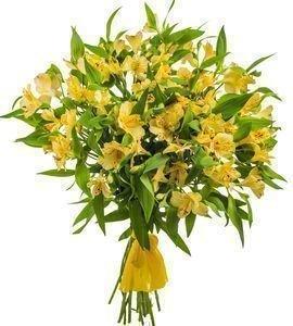 Курьерская служба доставки цветов оренбург цветы орхидеи купить в харькове