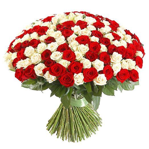 Букет из 151 разноцветной местной розы 50 см: букеты цветов на заказ Flowwow