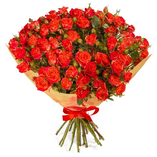 Букет из 35 красных кустовых роз 50 см: букеты цветов на заказ Flowwow
