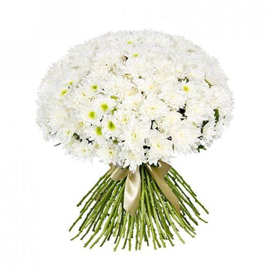 Букет из 101 белой хризантемы кустовой: букеты цветов на заказ Flowwow