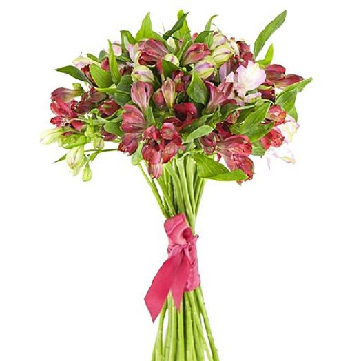 Букет из 7 красных альстромерий: букеты цветов на заказ Flowwow