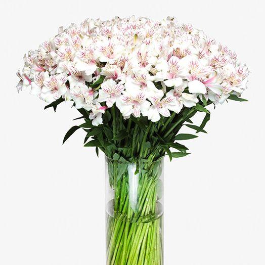 Букет из 55 белых альстромерий: букеты цветов на заказ Flowwow