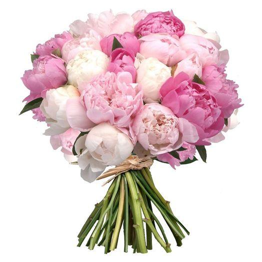 Букет из 35 разноцветных пионов: букеты цветов на заказ Flowwow