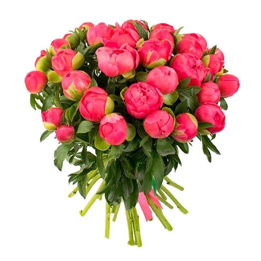 Букет из 71 красного пиона: букеты цветов на заказ Flowwow