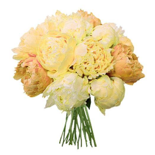 Букет из 10 желтых пионов: букеты цветов на заказ Flowwow