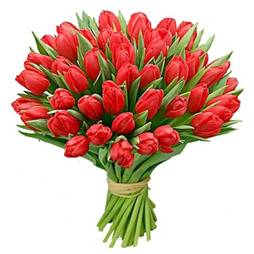 Букет из 151 красного тюльпана: букеты цветов на заказ Flowwow
