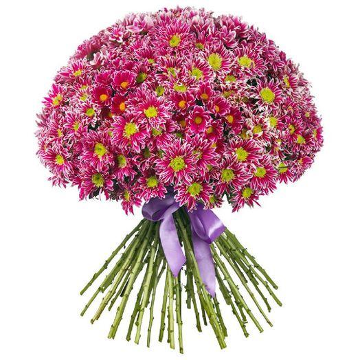 Букет из 101 красной хризантемы одноголовой: букеты цветов на заказ Flowwow