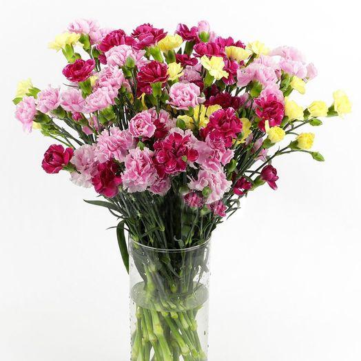 Букет из 55 разноцветных гвоздик: букеты цветов на заказ Flowwow