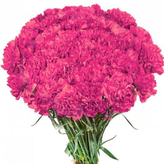 Букет из 101 розовой гвоздики: букеты цветов на заказ Flowwow