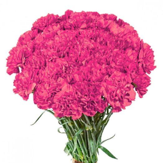 Букет из 61 розовой гвоздики: букеты цветов на заказ Flowwow