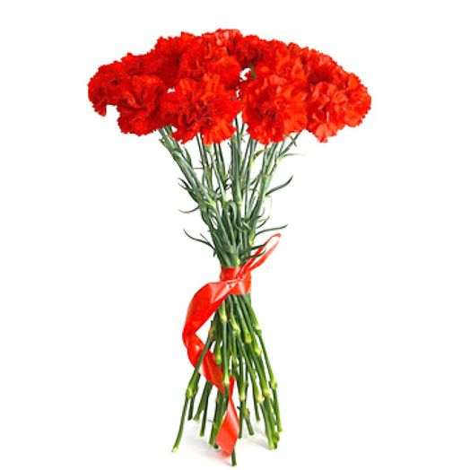 Букет из 20 красных гвоздик: букеты цветов на заказ Flowwow