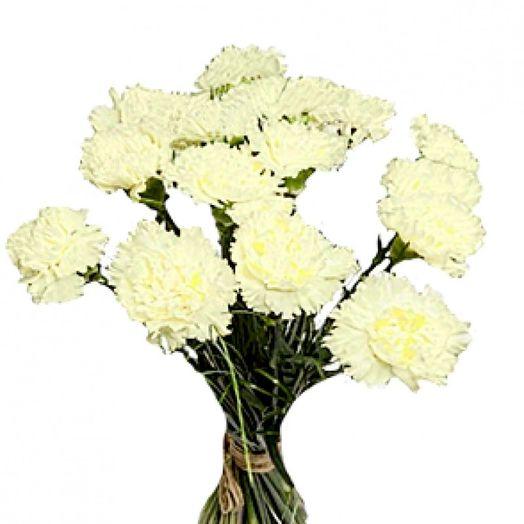 Букет из 15 белых гвоздик: букеты цветов на заказ Flowwow