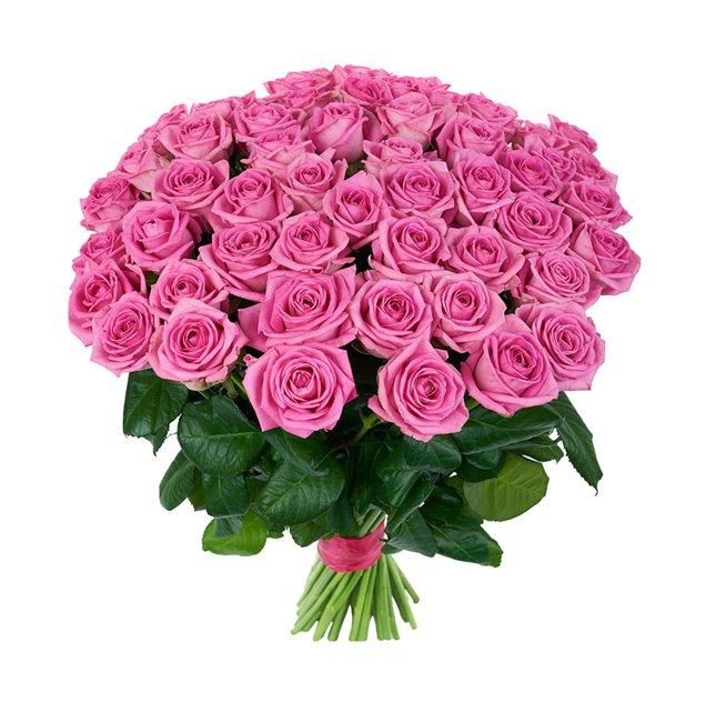 Букет из 51 розовой голландской розы 60 см: букеты цветов на заказ Flowwow