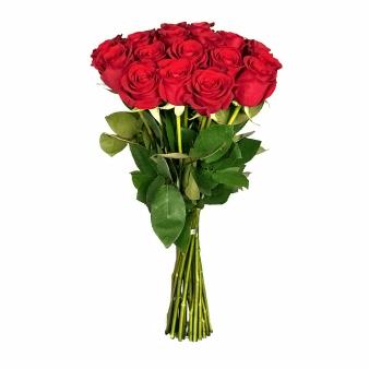 Букет из 11 красных голландских роз 60 см: букеты цветов на заказ Flowwow