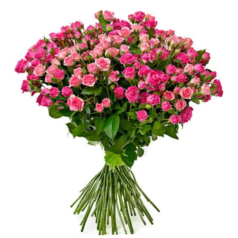 Букет из 51 розовой кустовой розы 60 см: букеты цветов на заказ Flowwow