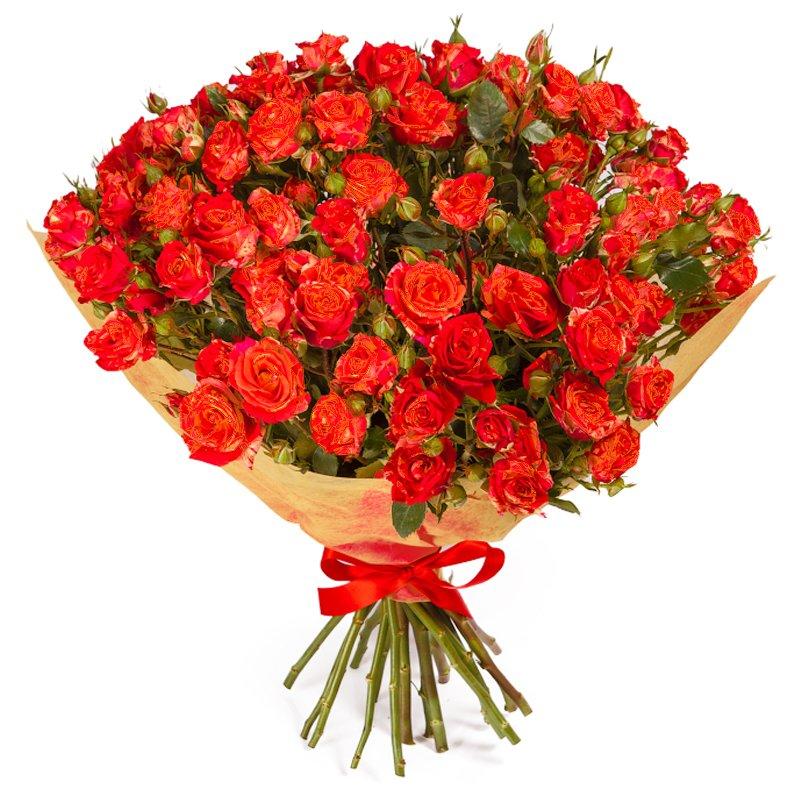 Букет из 31 красной кустовой розы 60 см: букеты цветов на заказ Flowwow