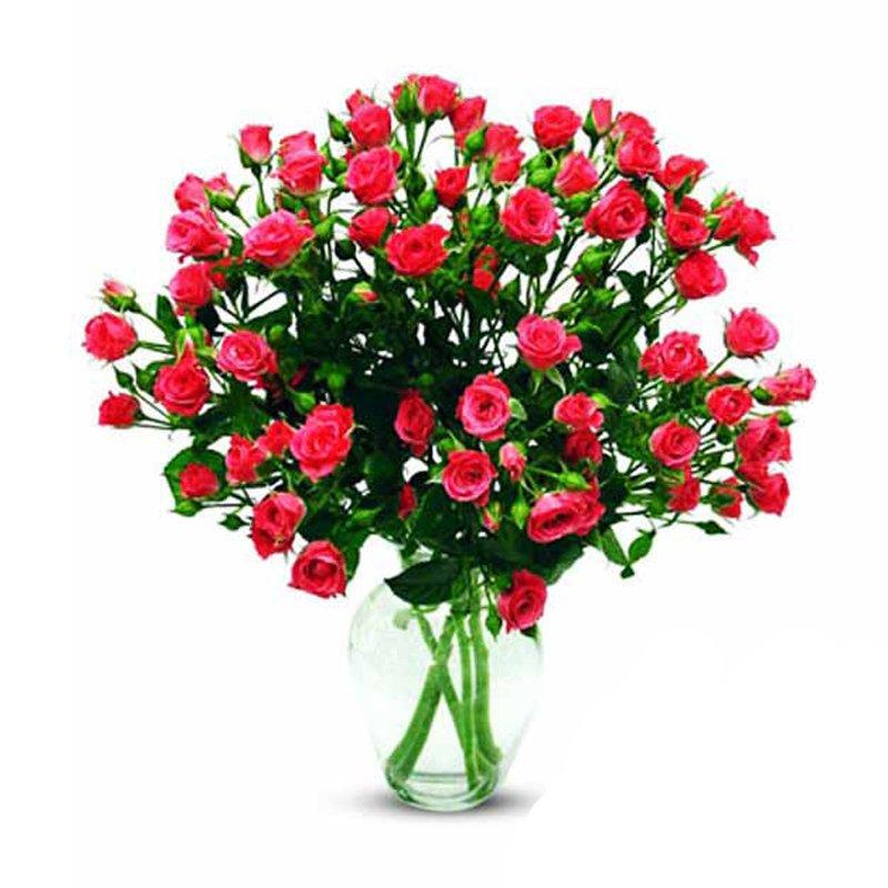 Букет из 7 красных кустовых роз 50 см: букеты цветов на заказ Flowwow