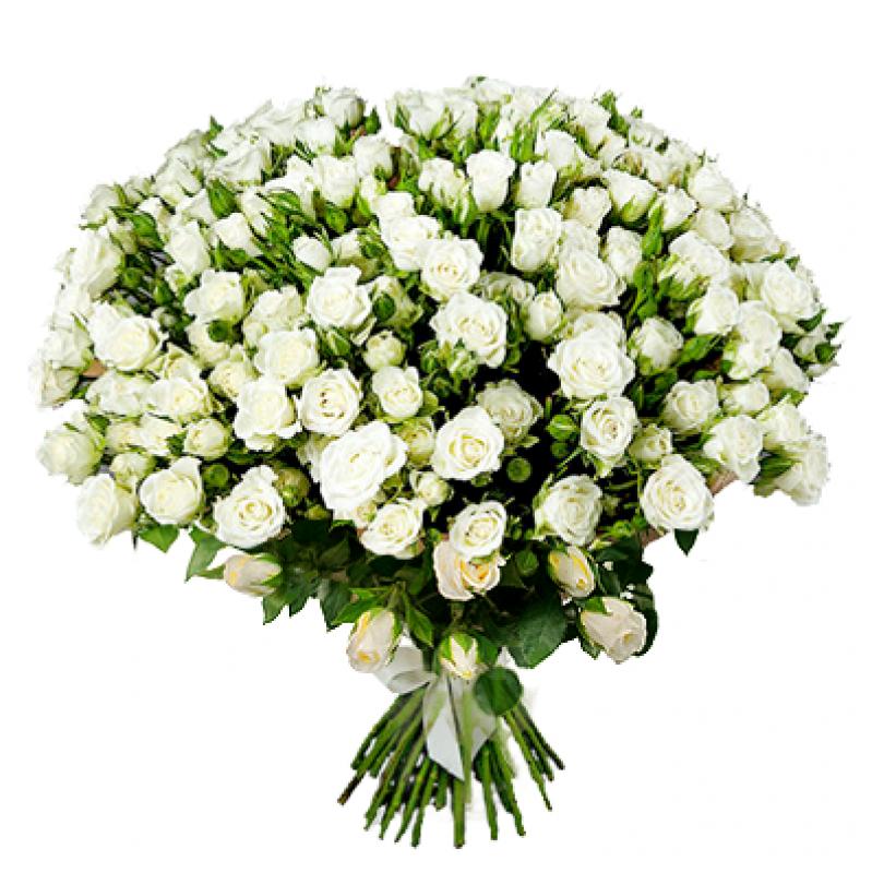 Букет из 35 белых кустовых роз 60 см: букеты цветов на заказ Flowwow