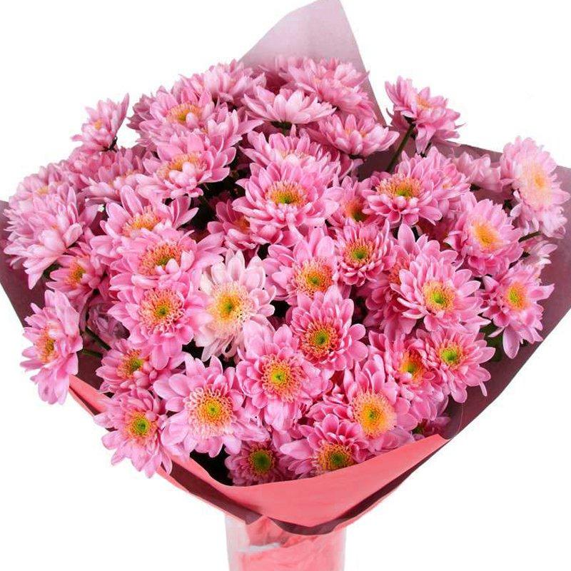 Букет из 30 розовых хризантем: букеты цветов на заказ Flowwow