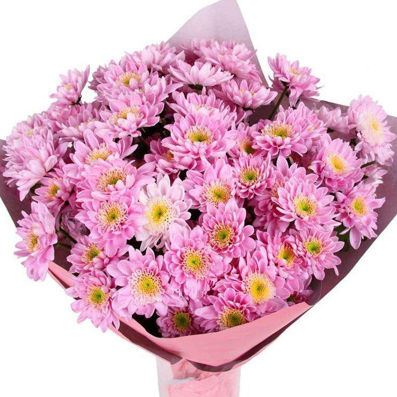 Букет из 7 розовых хризантем: букеты цветов на заказ Flowwow