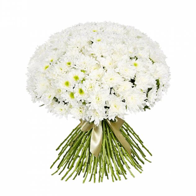 Букет из 30 белых хризантем: букеты цветов на заказ Flowwow