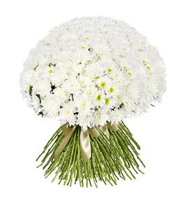 Букет из 45 белых хризантем: букеты цветов на заказ Flowwow