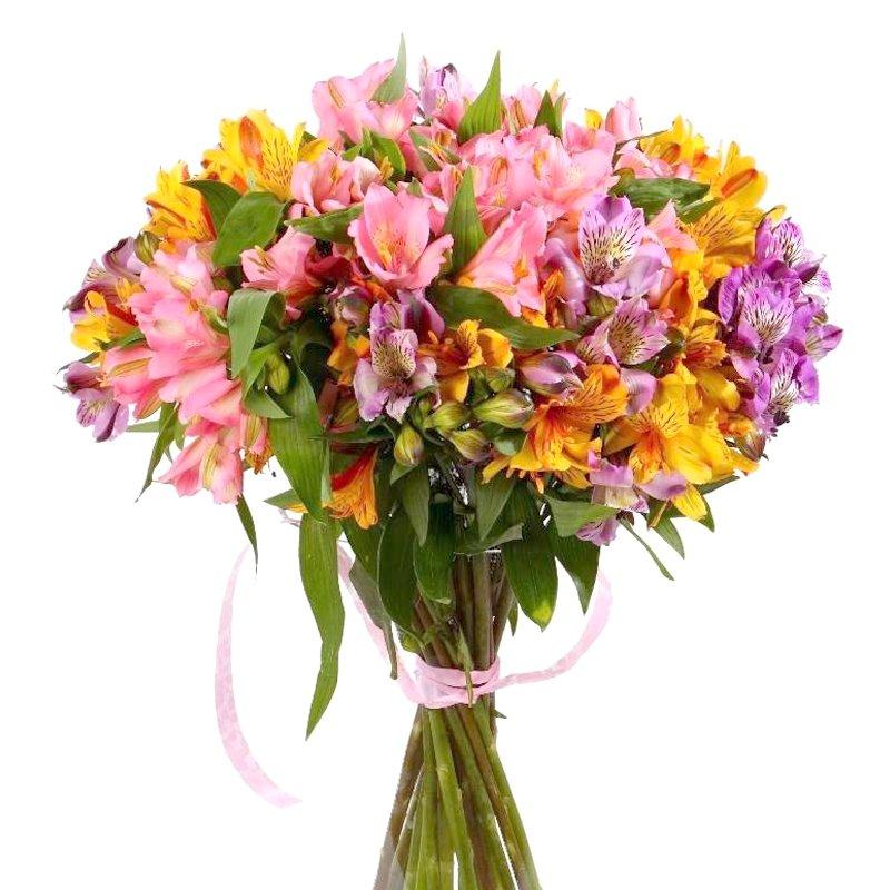 Букет из 35 разноцветных альстромерий: букеты цветов на заказ Flowwow