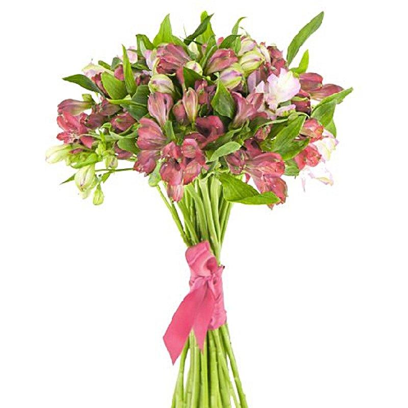 Букет из 10 красных альстромерий: букеты цветов на заказ Flowwow