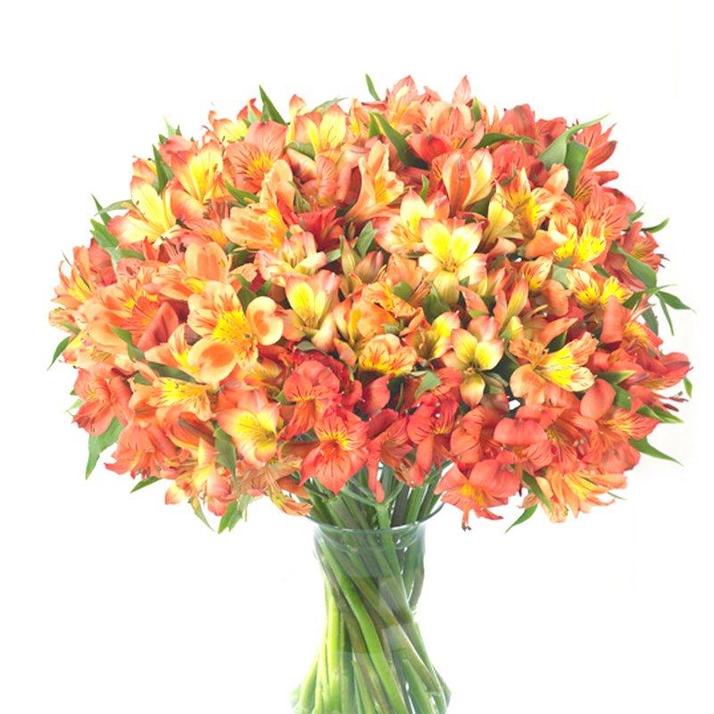 Букет из 50 желтых альстромерий: букеты цветов на заказ Flowwow