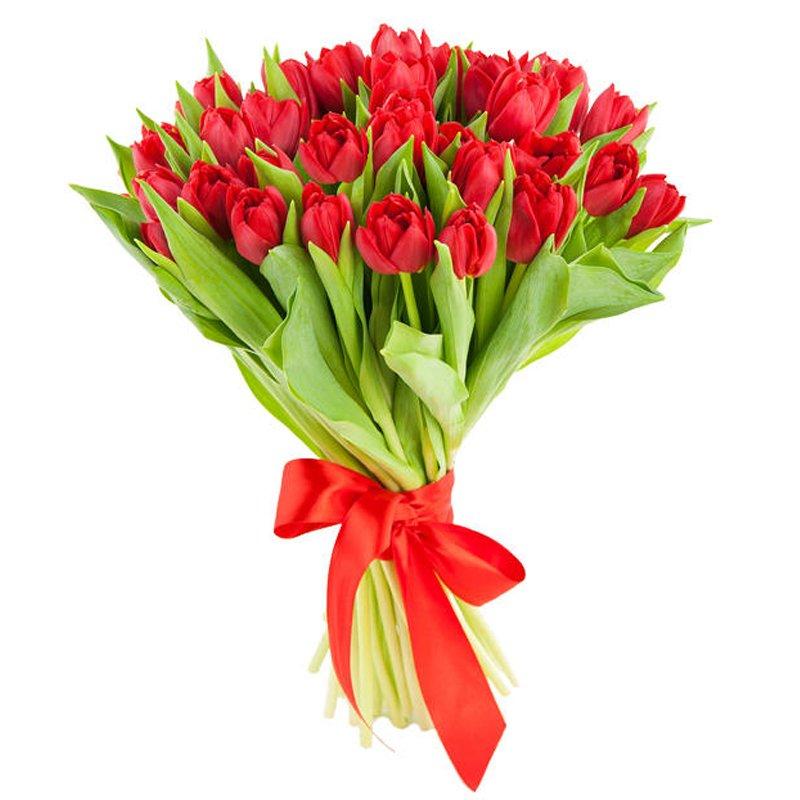 Букет из 25 красных тюльпанов: букеты цветов на заказ Flowwow