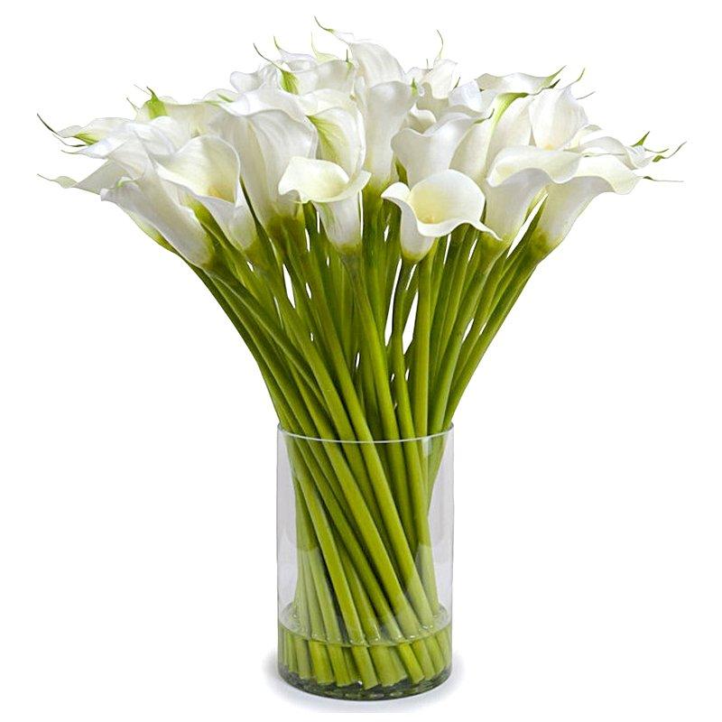 Букет из 35 белых калл: букеты цветов на заказ Flowwow