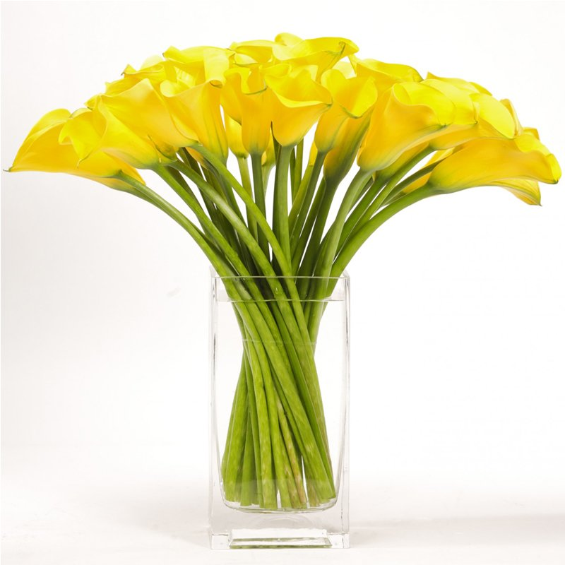 Букет из 25 желтых калл: букеты цветов на заказ Flowwow